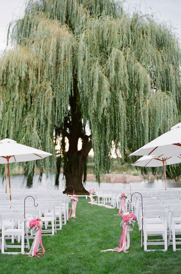 Not for the wedding posts, but I absolutely adore willow trees and if i could get married here, it would be amazing.
