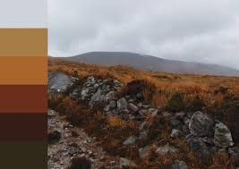 Turfprojects.ie Achill Island Mayo Ireland Colour Palettes Irish Landscape Inspiration