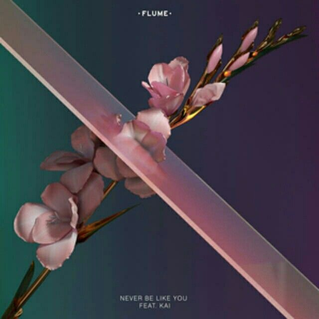 Never Be Like You- Flume/Kai