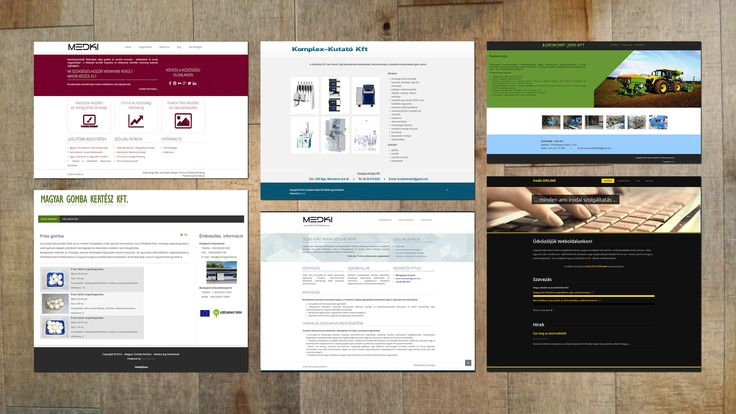 business Websites | minimal Design