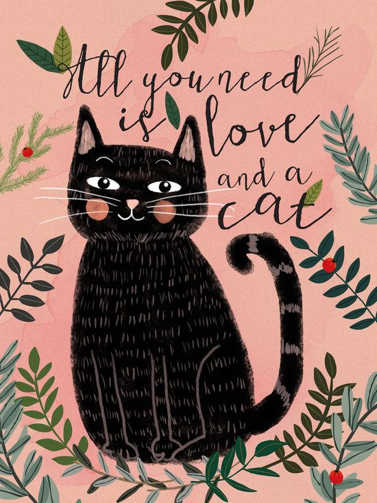 """All you need is love and a cat"" quote. So very true!"