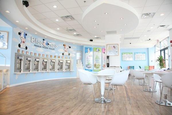 Bloo Moo Frozen Yogurt, interior