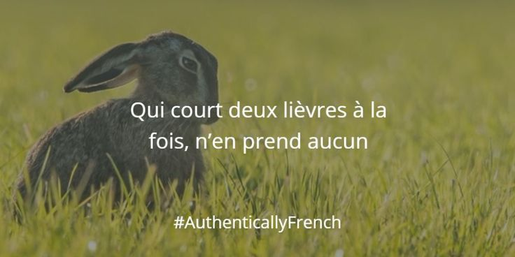 Qui court deux lièvres à la fois, n'en prend aucun Pronunciation:ki kuʁ dø ljɛvʁ a la fwa, nɑ̃ pʁɑ̃ okɛ̃ Literal translation: Who runs after two hares at the same time, catches none Origin: Attributed to the Dutch theologian Erasmus English equivalent: Too many irons in the fire or spreading yourself too thin?