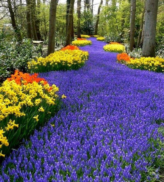Descanso Gardens. La Canada Flintridge, California A Mere 20 Minute Drive  Outside Of