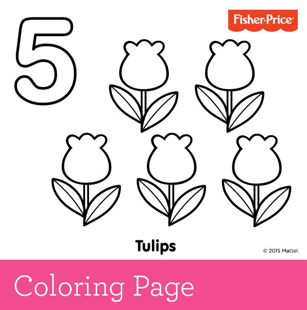 Learning to count number 5 pretty tulips growing in for Number 5 coloring page