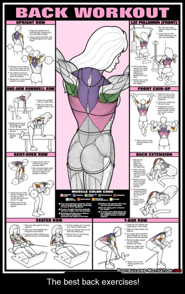 The best back exercises! - The best motivational posters at all internet…