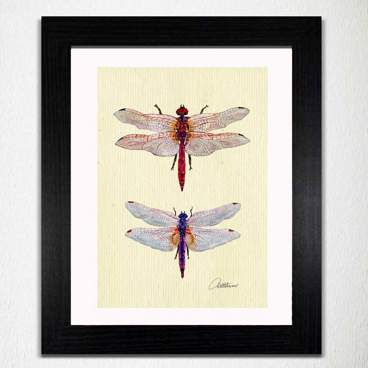 1000 ideas about dragonfly decor on pinterest butterfly for Dragonfly mural