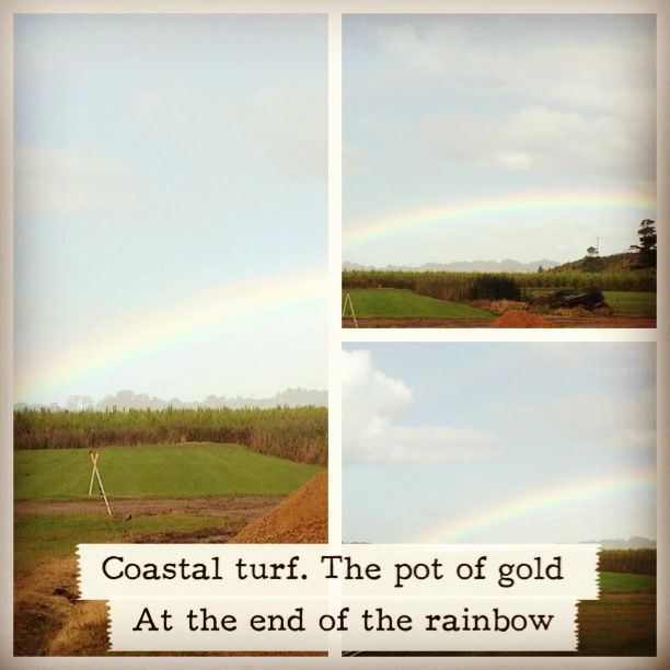 Pot of Gold at the end of the Rainbow- Coastal Turf's Grass?