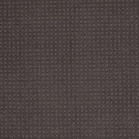 Color: 00502 Steel Beam In Savannah - EA024 Shaw ANSO Nylon Carpet Georgia Carpet Industries