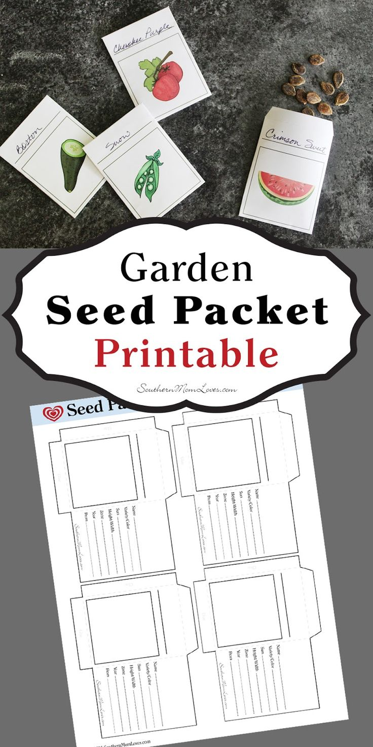 Now is the time when gardens are winding down, and if you use heirloom seeds, you're probably drying out your seed for next year's garden. Instead of storing them in baggies, jars, or in folded slips of paper, you can get organized with these (free!) printable seed packets.
