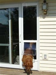 51 best temporary pet doors patio window inserts images on four pet opening sizes available with multiple rises and three color options great pet door solution for sliding glass planetlyrics Gallery