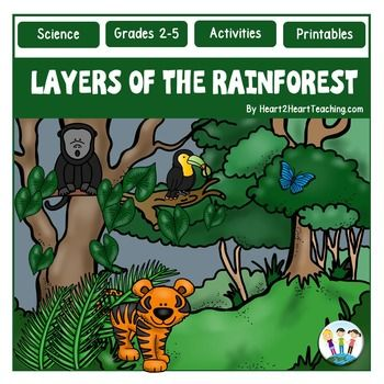 Your students will love learning all about the layers of the rainforest with this 20 page print-n-go activity pack and flip-up book.  This packet includes everything you need to teach, investigate, and learn all about the Rainforest with a close-up look at Four Layers of the Rainforest. Informational articles come in both black and white and color versions.
