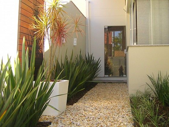 Love the large white planter next to spiky plants!