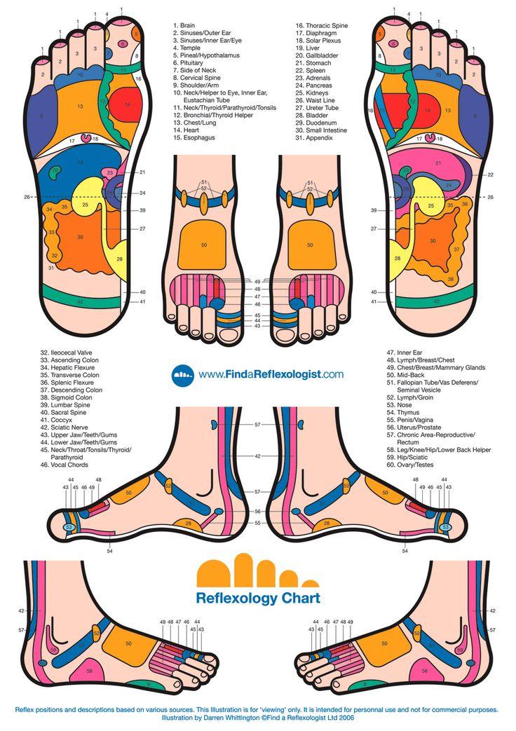 titik refleksologi kaki