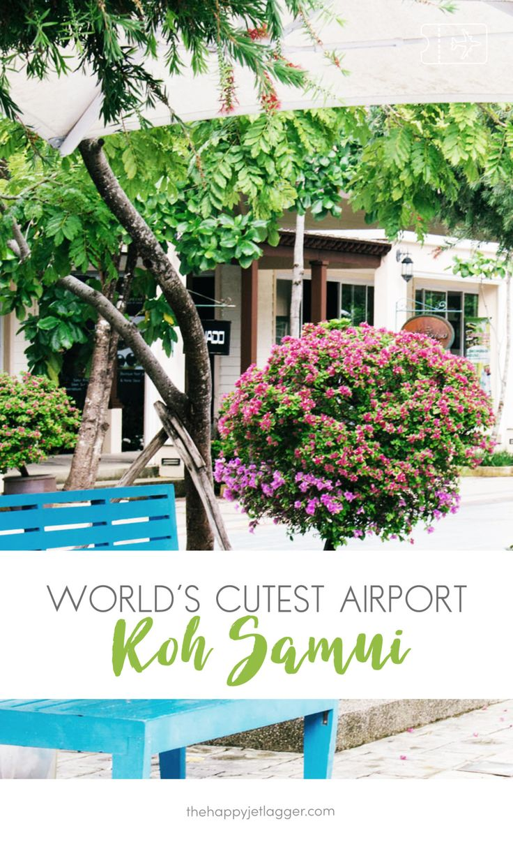 Koh Samui airport is so charming! Tropical style and wooden details give this airport its special atmosphere - see more on The Happy Jetlagger! Koh Samui USM airport: The most charming airport in the world. Guide for Samui Airport on thehappyjetlagger.com