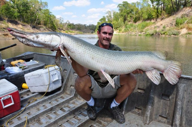 17 best images about favorite places spaces on pinterest for Trinity river fishing spots