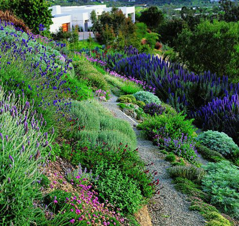 Hillside landscaping idea