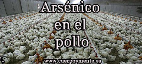 Se declara que el pollo porta arsenico