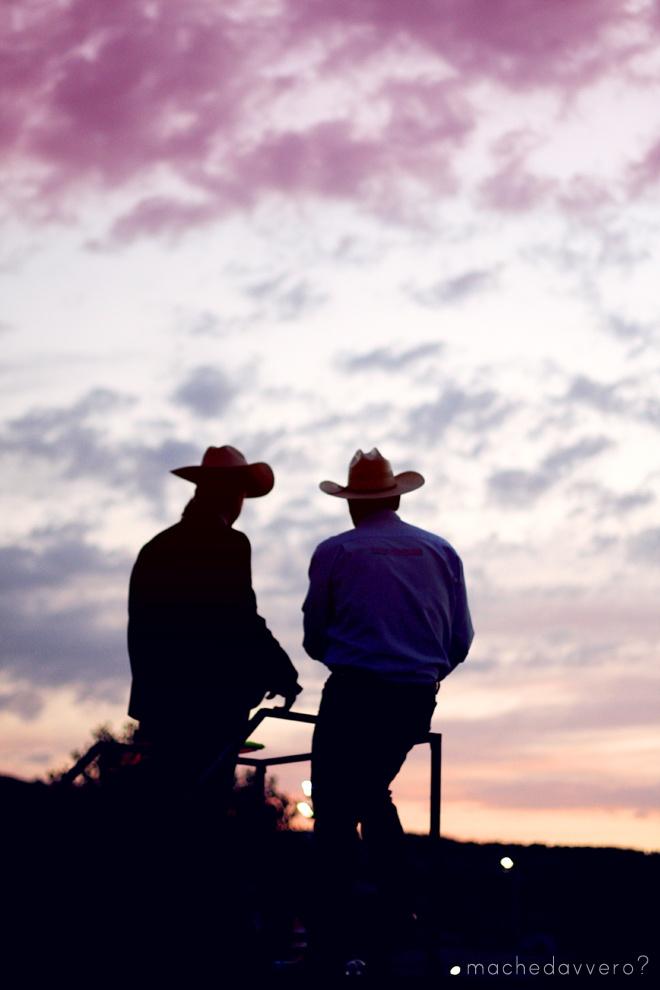 #rodeo #butteri