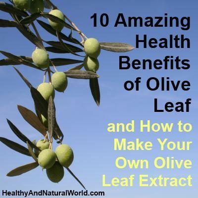 Olive leaf extract benefits eczema