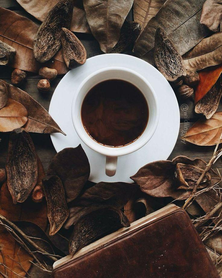 kahve, kitap, seyahat