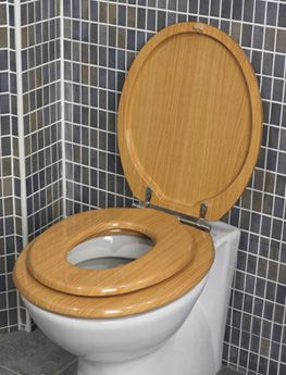 family toilet seat wood. A Family Toilet Seat  no need for a separate kid s potty on the floor Best 25 toilet seats ideas Pinterest Modern
