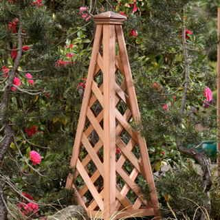 Give your flowering vines a lovely playpen of cedar and copper. A brilliant architectural accent for the container or garden!