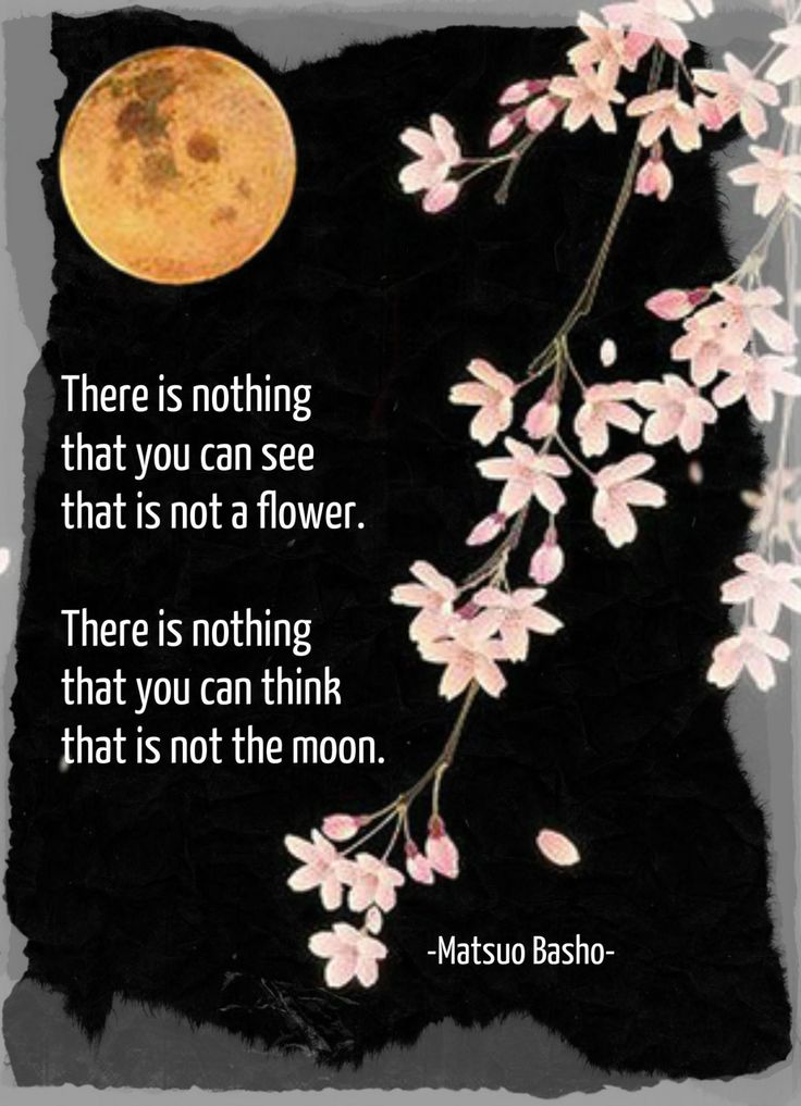 There is nothing that you can see that is not a flower. There is nothing that you can think, that is not the moon. (Matsuo Basho 1644-1694) flower & moon image from sidewalkchalk