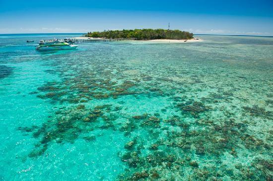 Big Cat Green Island Reef Cruises - Day Tour: Green Island Tourism Queensland