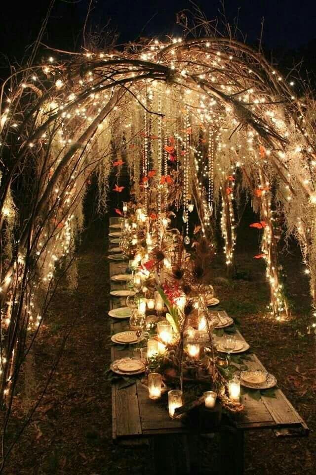 Night Garden Dinner / Party / Wedding