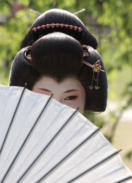 memoirs of a geisha themes