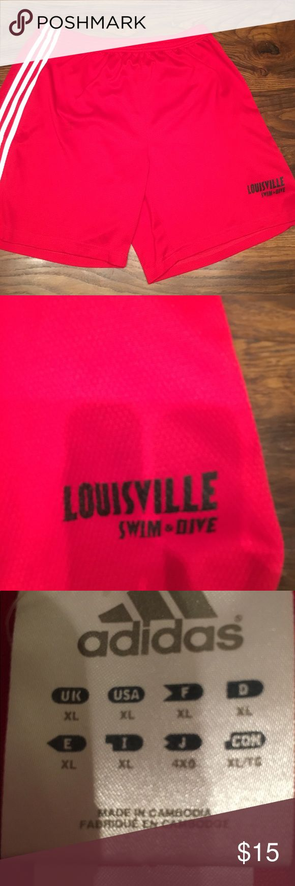 NWOT Men's Adidas Red Shorts XL Louisville swimming and diving adidas Shorts Athletic