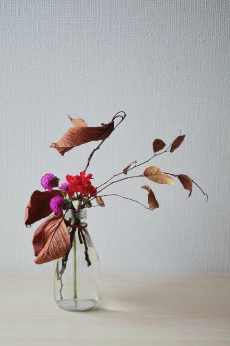 still life autumn
