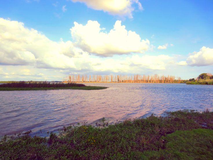 langs de waterkant @biesbosch