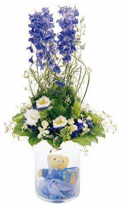 αποστολη λουλοδιων στην αθηνα και σε ολο τον κοσμο Γιά τήν Γέννηση του μωρου σας