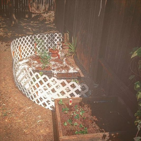 Garden Version 2.0 includes dog-proof updates and a raised bed made from repurposed wooden steps