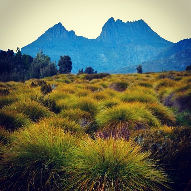 Cradle Mountain Tasmania I Australia @squarefoto's photo