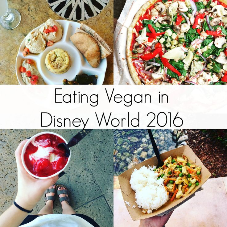 Eating Vegan in Disney World 2016 | The Friendly Fig