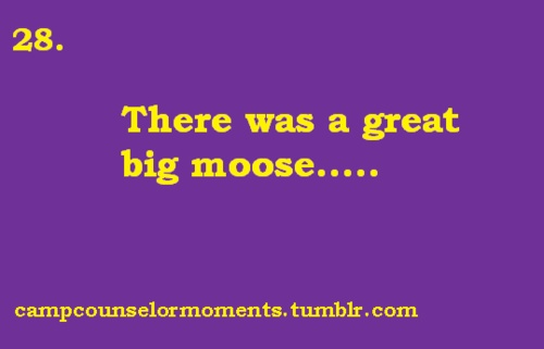 In fifth and sixth grade our classes took an overnight trip to a rustic campsite in rural Maryland, and this song about the moose was the only thing I enjoyed about it. That and the fruit punch.