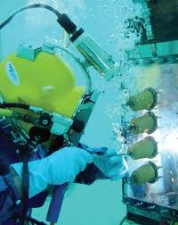 underwater welding pictures - Google Search