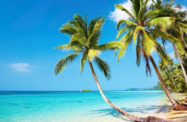 Tropical beach 4K Ultra HD wallpaper | 4k-Wallpaper.Net