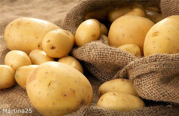 Уникальная методика выращивания картофеля. Обсуждение на LiveInternet - Российский Сервис Онлайн-Дневников