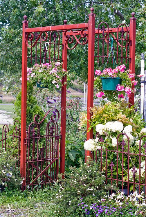 177 Best Images About Arbors And Trellises On Pinterest