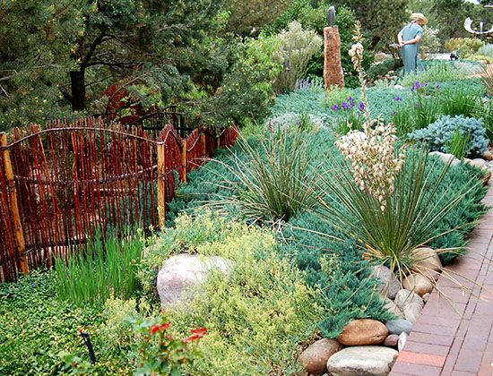 165 best images about drought tolerant landscaping ideas for Garden design xeriscape