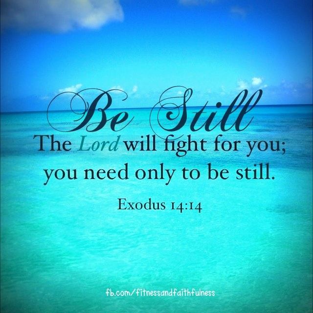 one of my favorite verses.  i'm always so busy trying to do it; all He wants is for me to be still and let Him fight for me!  Thank you Lord!