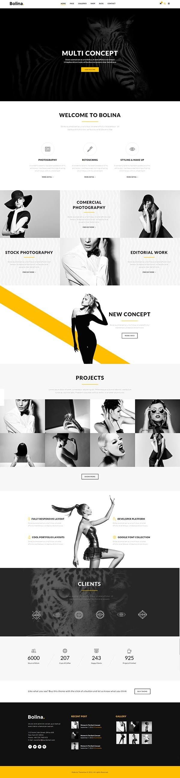 Bolina – Multipurpose WordPress Theme