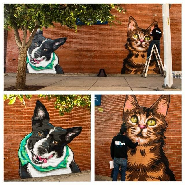 Mr. Prvrt's mural for animal shelter in rochester, ny : viewable on his instagram