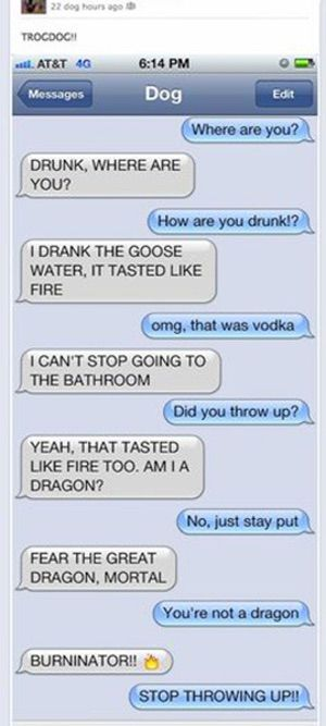 Dragons LOVE Goose Water is listed (or ranked) 3 on the list 38 Drunk Texts You Wish You Got