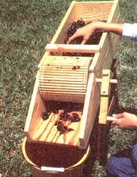 Gardening Hand Tools for Harvest - Organic Gardening - MOTHER EARTH NEWS