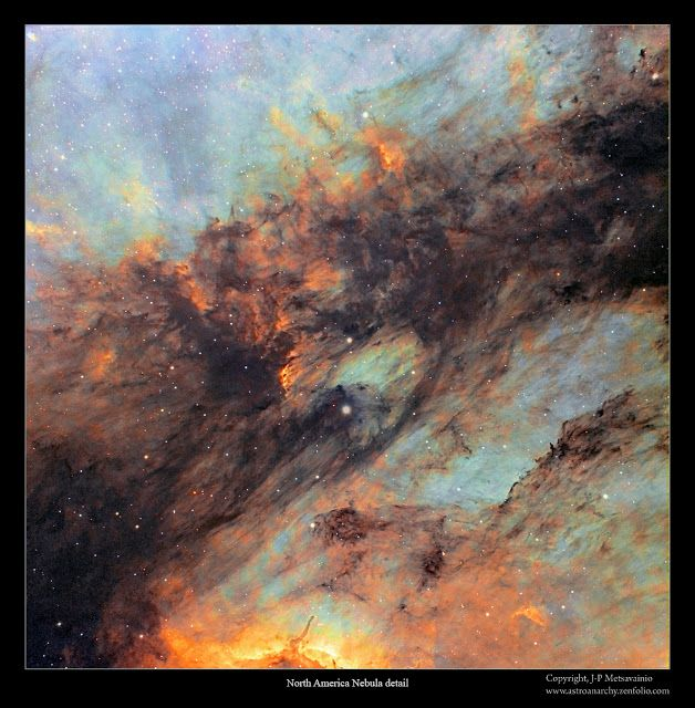 Astro Anarchy: A detail photo of the dark filaments in Pelican nebula